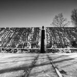 Foto 1 Loop de winter uit foto Petra Huijsmans